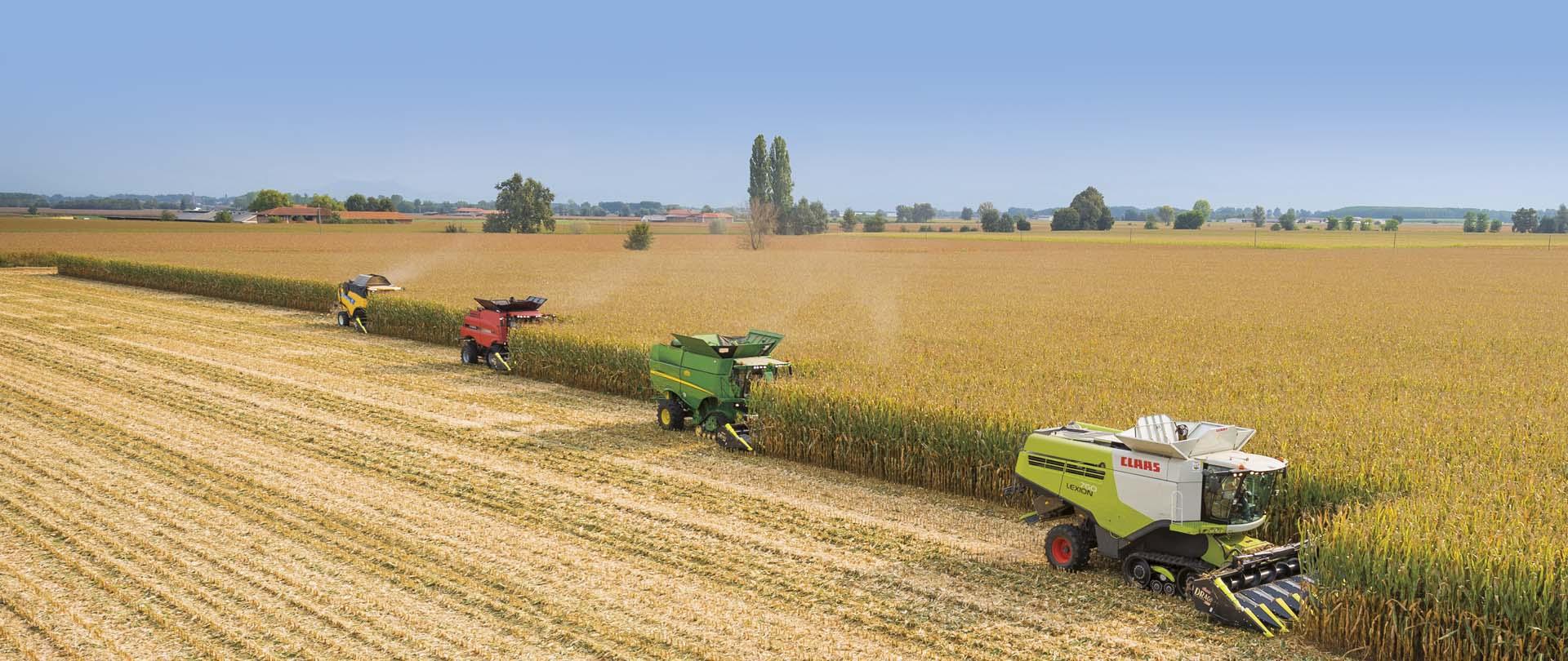 Olimac-drago-gt-testata-mais-mietitrebbia-claas-johndeerecase-newholland-laverda-corn-head-harvester-maispfluecker-maehdrescher-cabezal-maíz-cosechadora