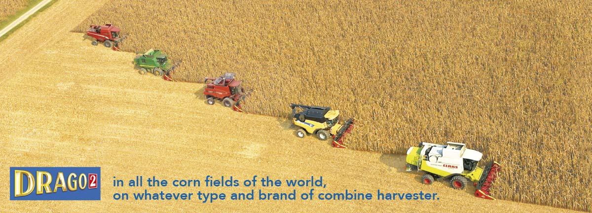 Olimac-Drago-2-in-all-corn-fields-of-the-world