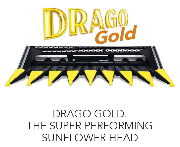 олимак-драго-золото-супер-производительность-подсолнечник-голова